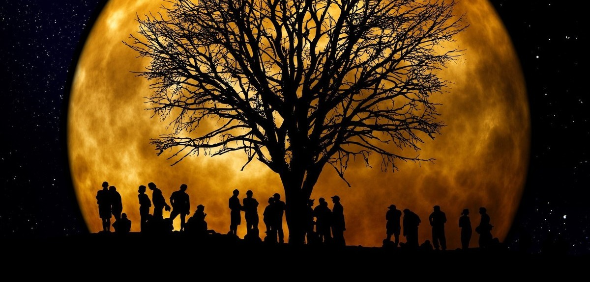 your-findmypast-family-tree-troubleshooter-header